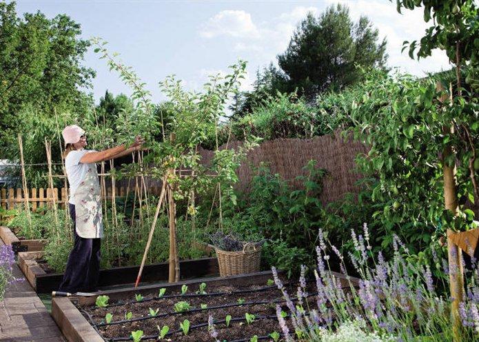 C mo tener un huerto en tu terraza o balc n for Decoracion de jardines con arboles frutales