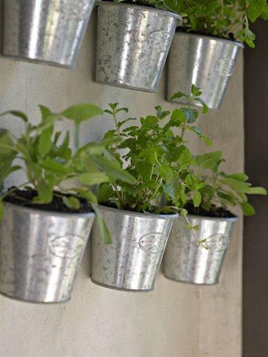 Plantas para decorar y cocinar for Macetas para cocina