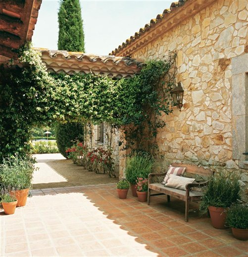 Una mas a catalana con varias vidas - Conillas garden center ...