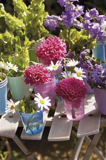 bulbos de primavera flores en verano