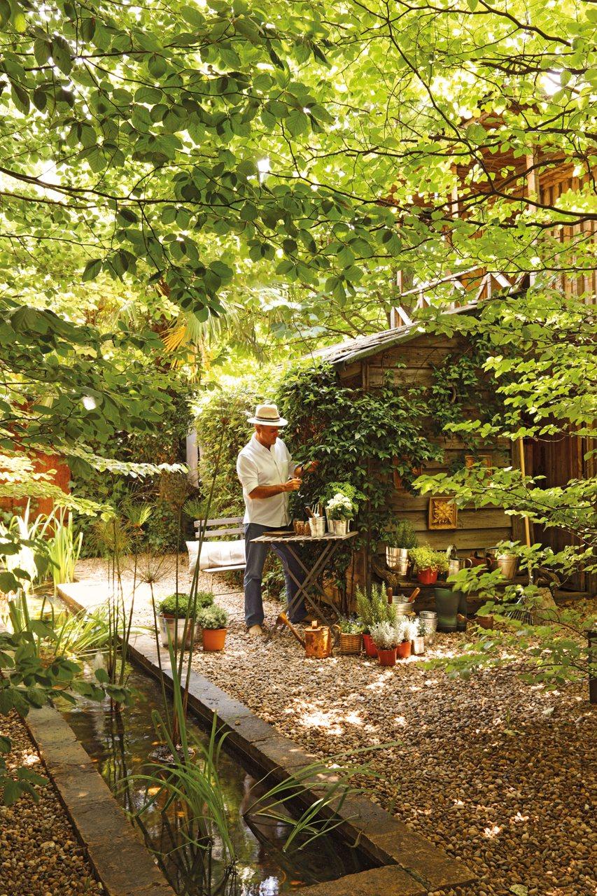 Un jardín con muchas plantas de día y de noche