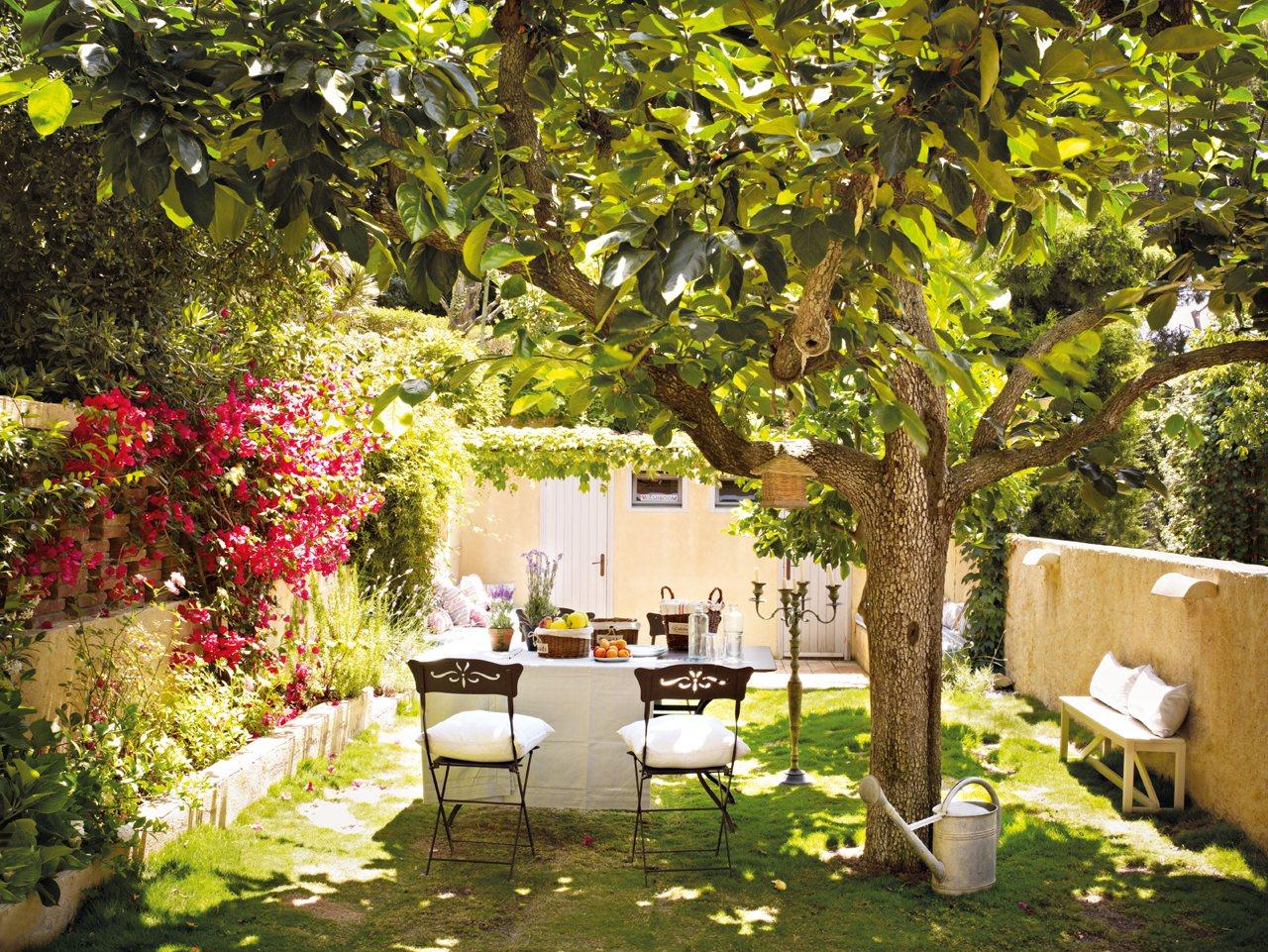 Foto quintal com plantas de ana camila vieira 947703 for Jardines en patios pequenos