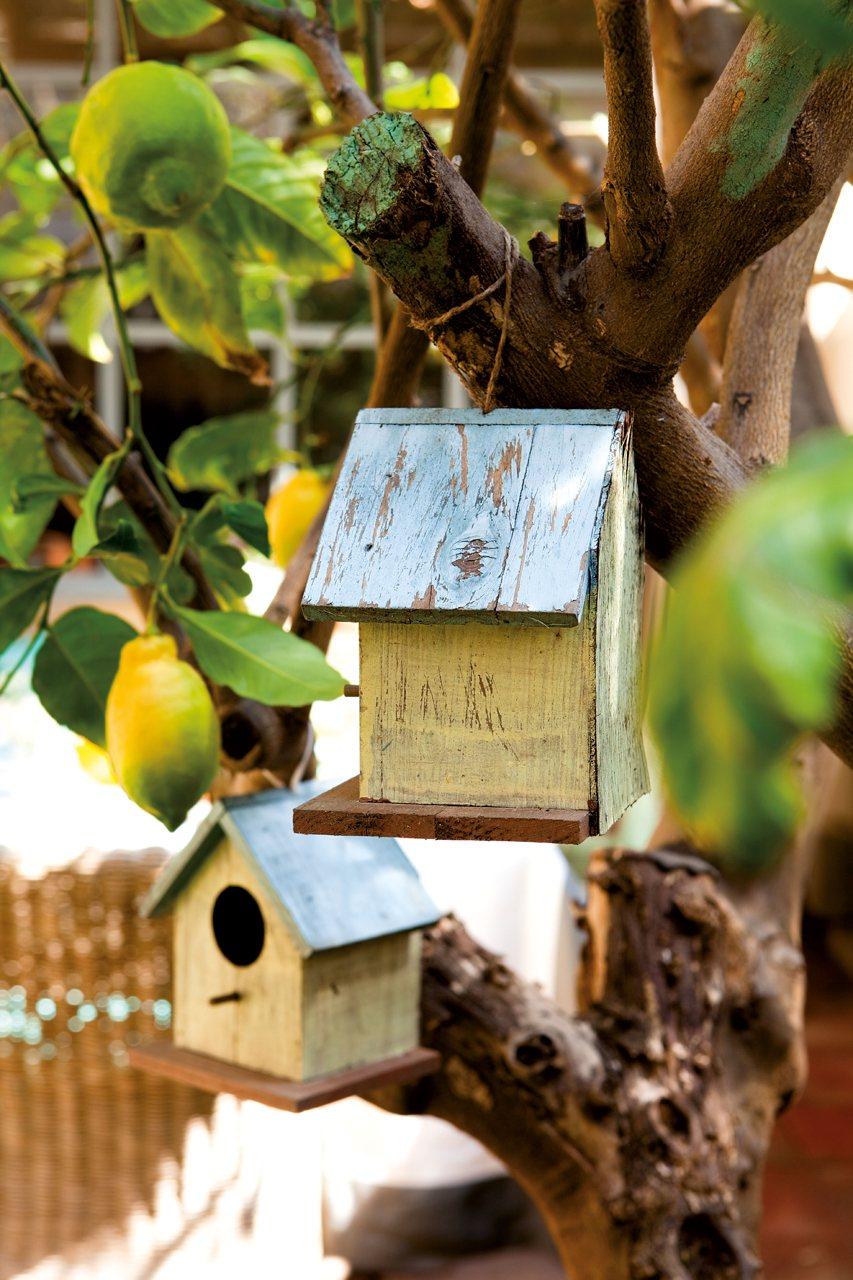Una casa con jard n en medio de la ciudad - Casitas para pajaros jardin ...