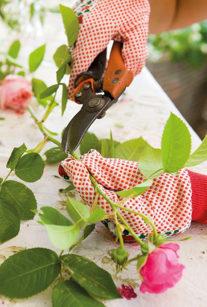 Persona cortando los tallos de los ramos de flores