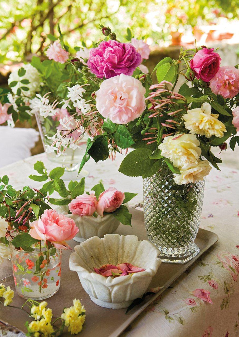 Flores en jarrones de diferentes tipo