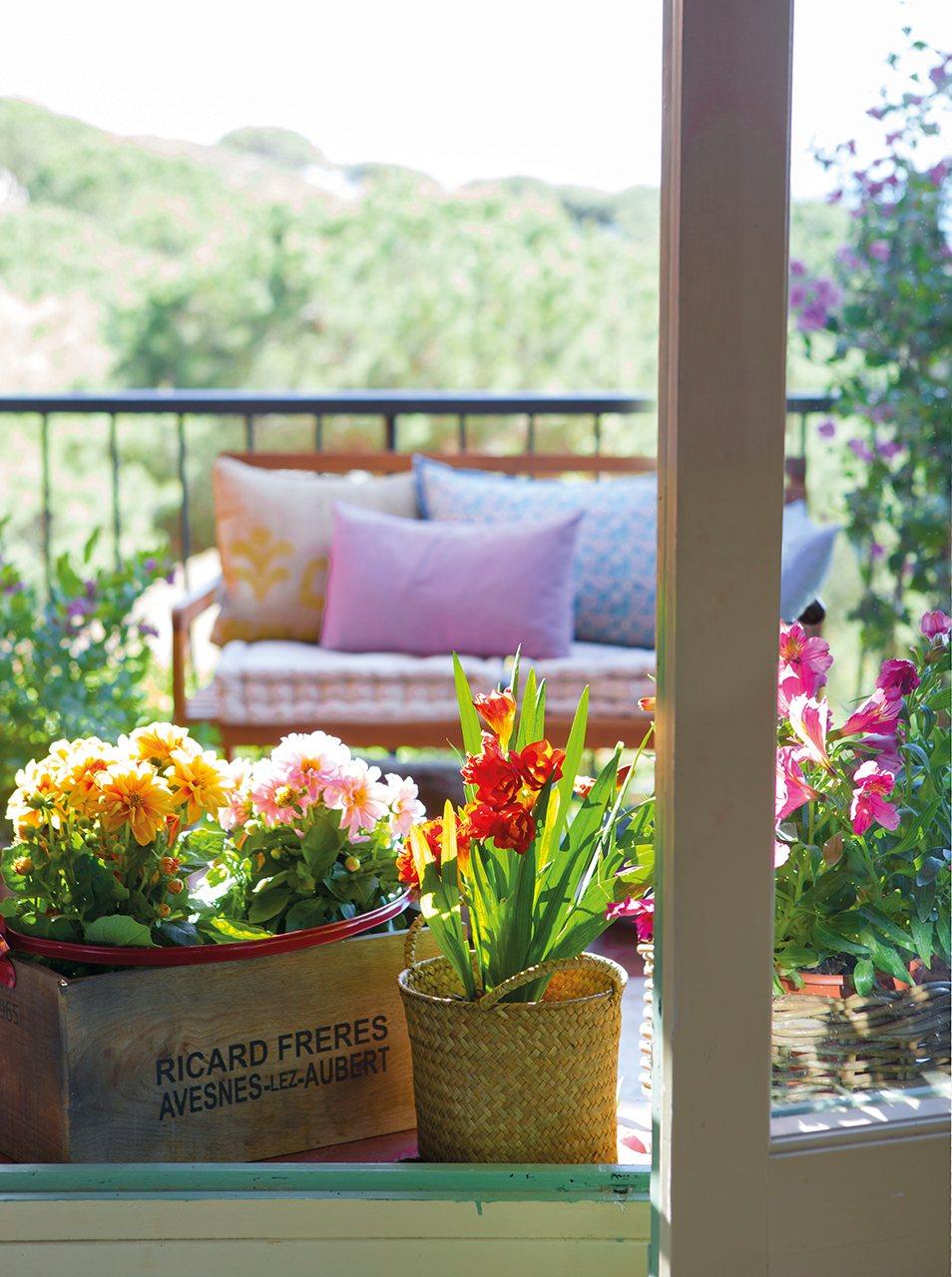 Crea un jard n en la ventana decorando con flores for Idea brisa vista para jardin