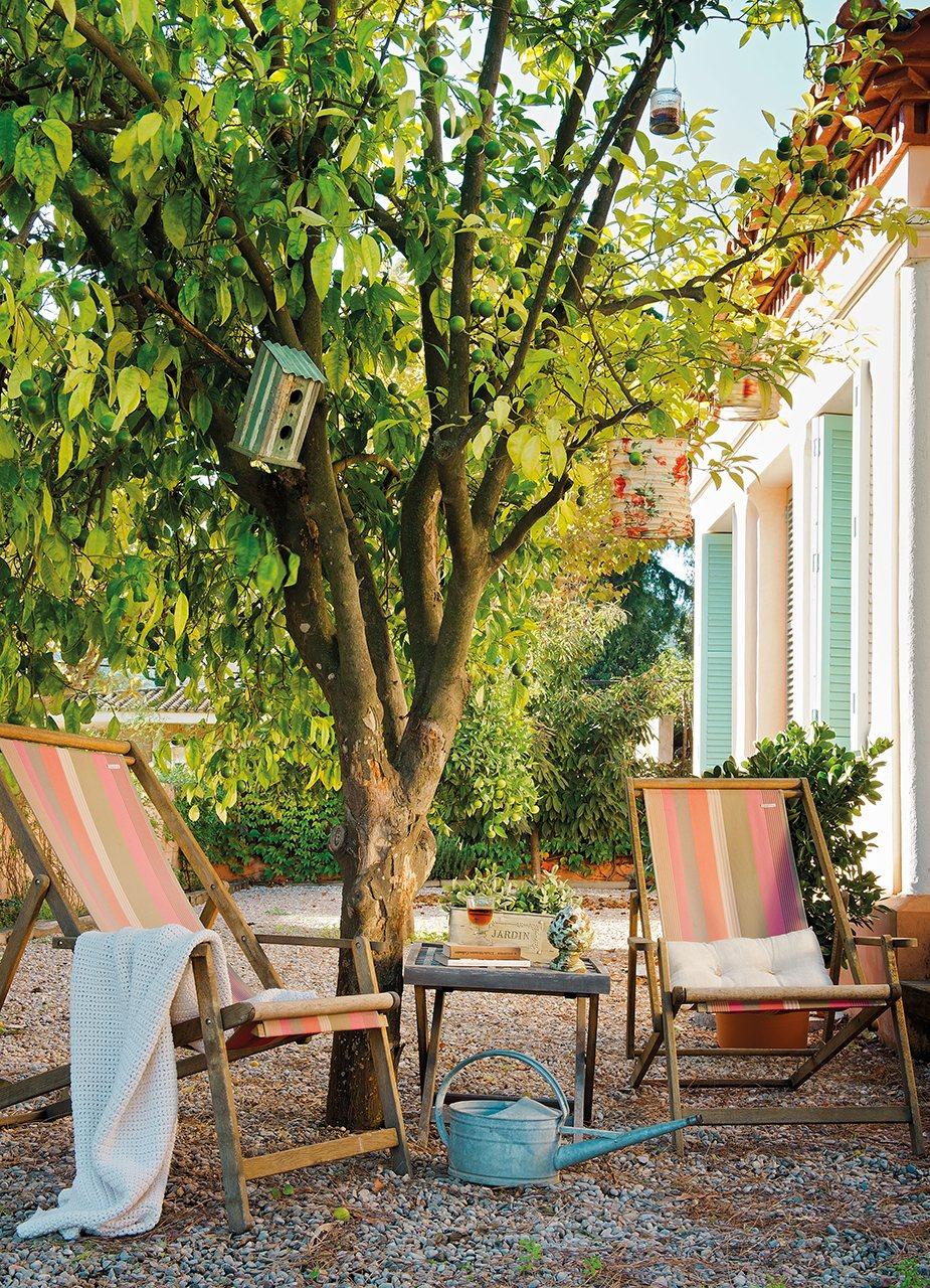 La terraza ideal todo para conseguirla - Arboles jardin ...