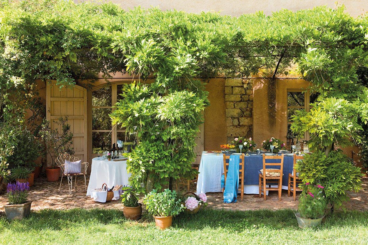 Vino rosas friends for Casa con jardin barcelona
