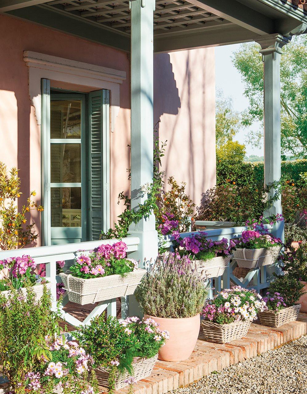 C mo plantar flores en el balc n en primavera - Decoracion de balcones con plantas ...