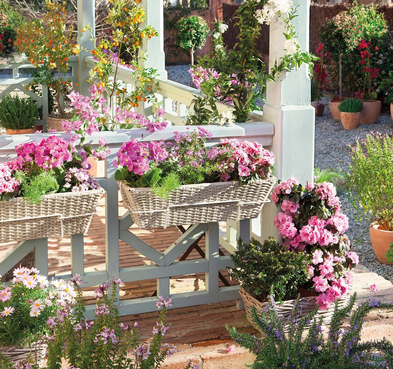 C mo plantar flores en el balc n en primavera - Tipos de jardineras ...