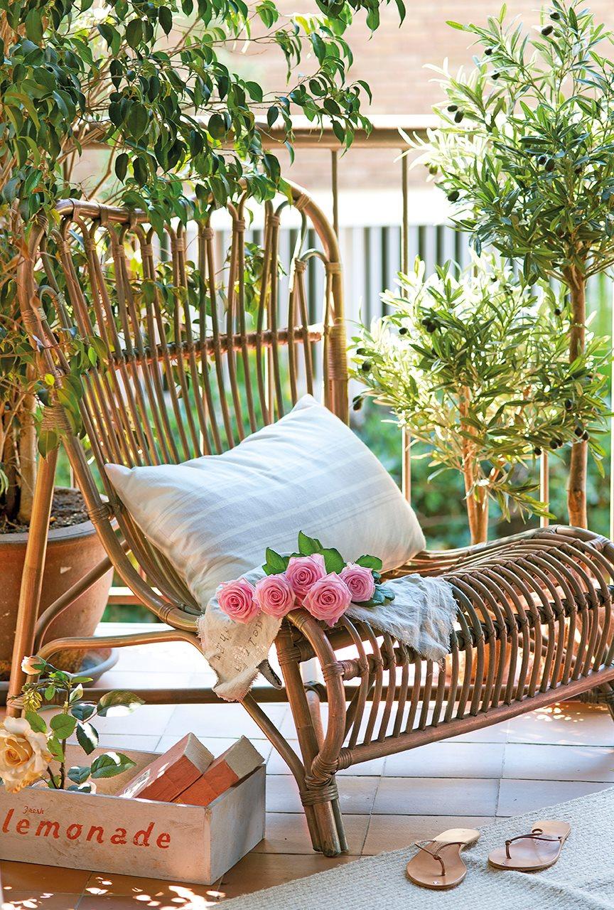 Preparar la terraza para el verano - Arbolitos para jardin ...