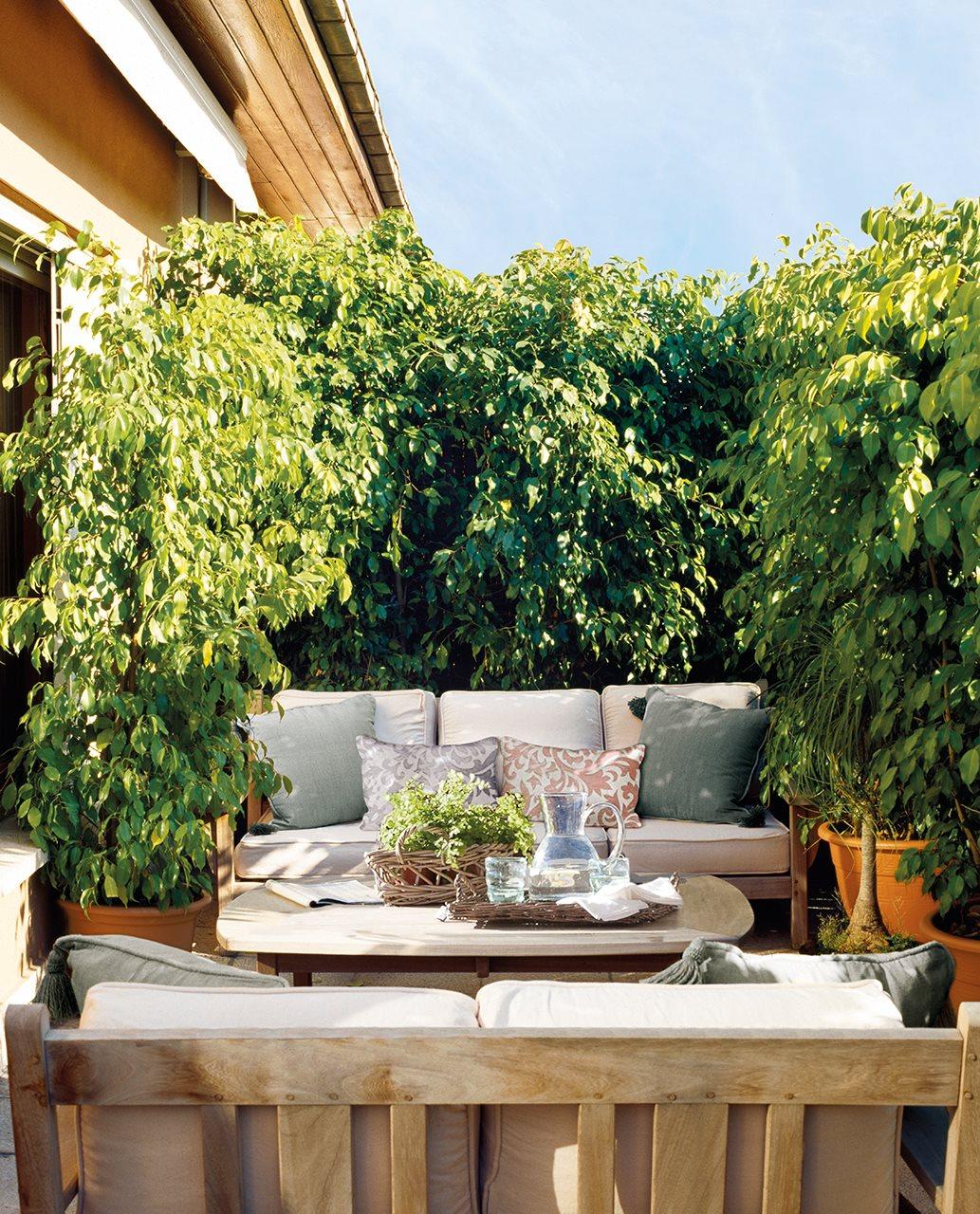 Terrazas de ciudad bien aprovechadas - Plantas terraza ...