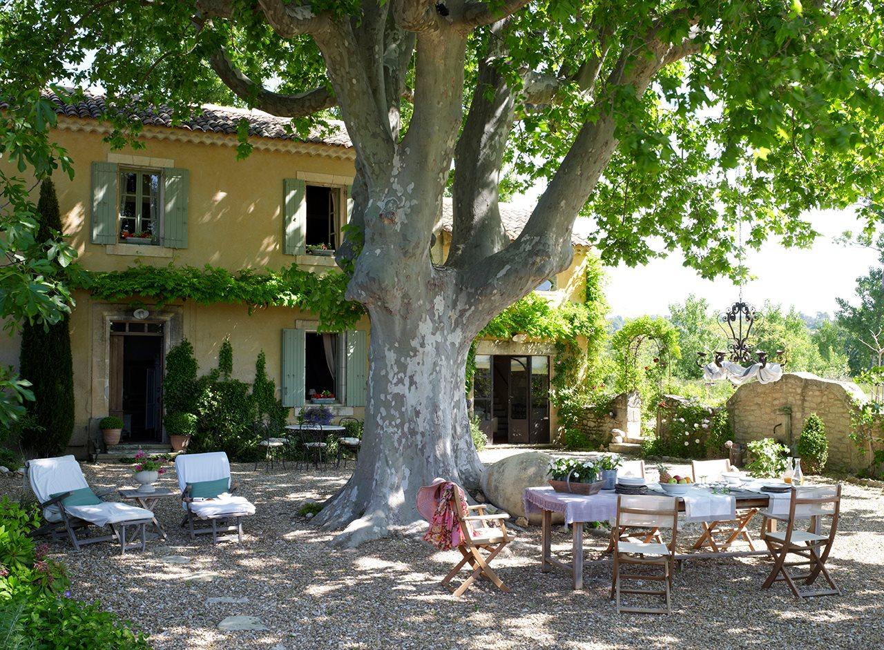 Los 15 mejores comedores de exterior for Arboles sombra jardin