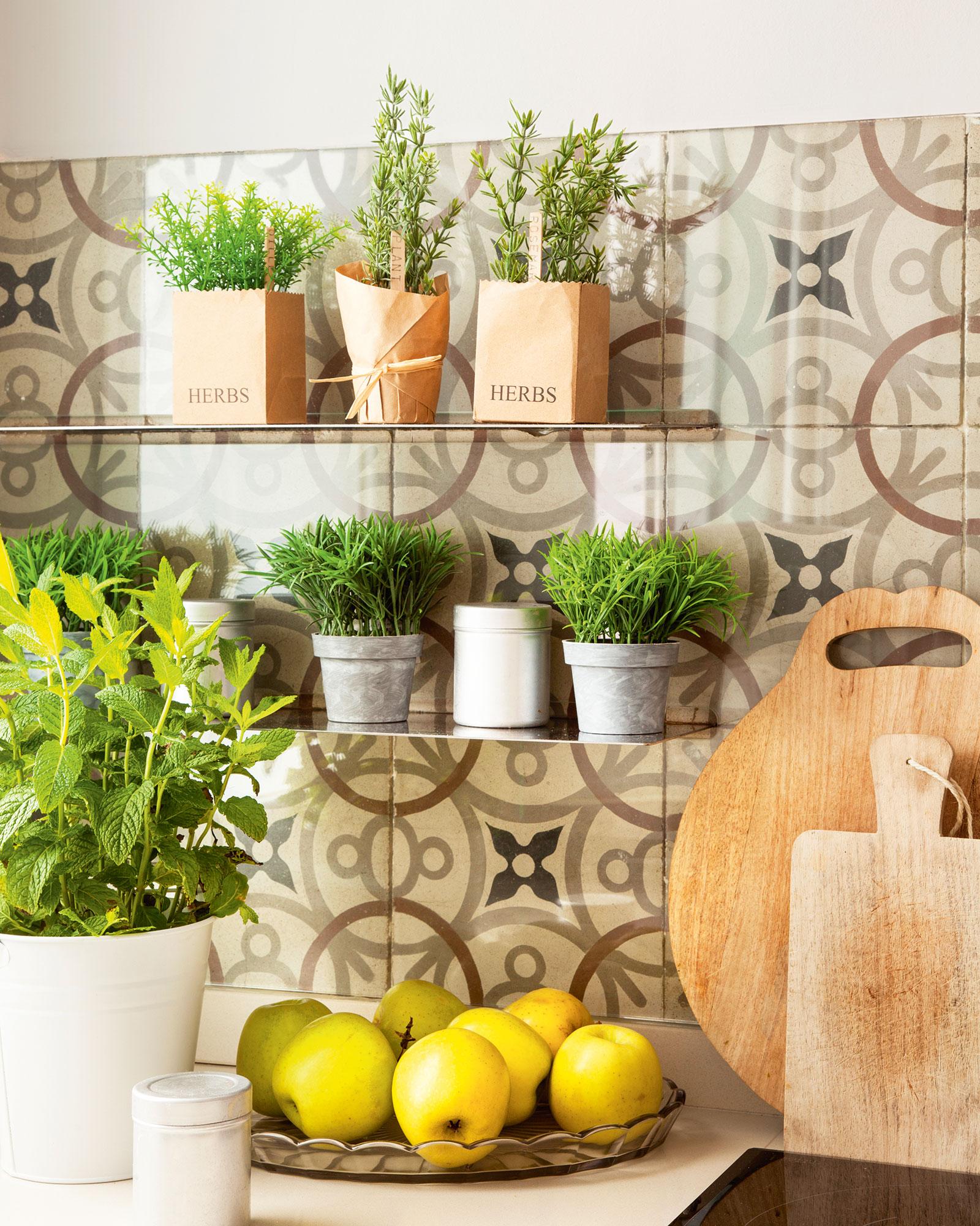 Una casa sana plantas que limpian el aire y purifican el - Plantas aromaticas en la cocina ...