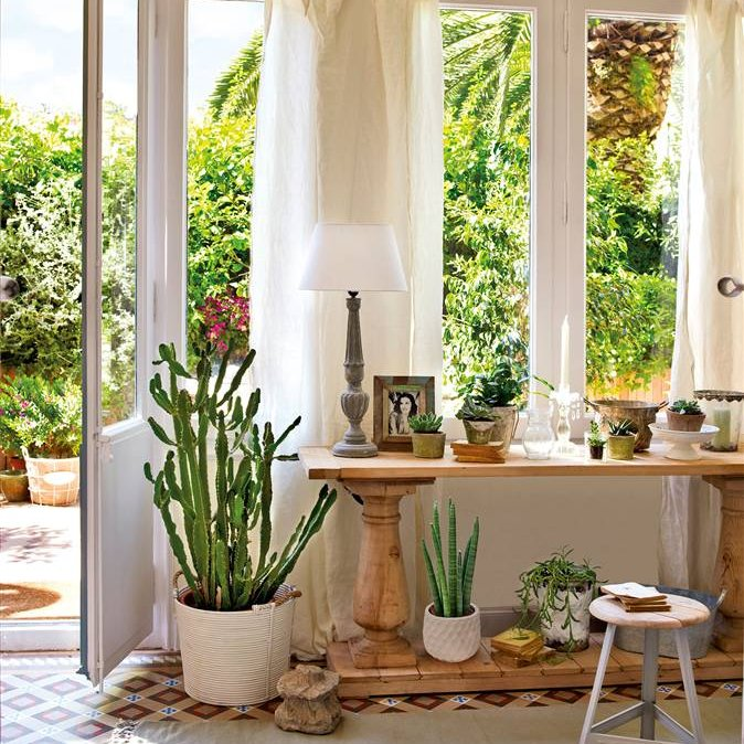 Decorar la casa sin gastar mucho for Plantas de interior para macetas pequenas