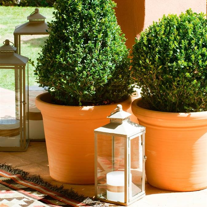 Consejos para poner a punto la terraza - Macetas en la pared ...