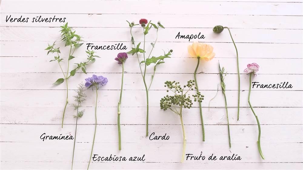 Cómo Hacer Un Bonito Ramo De Flores De Colores