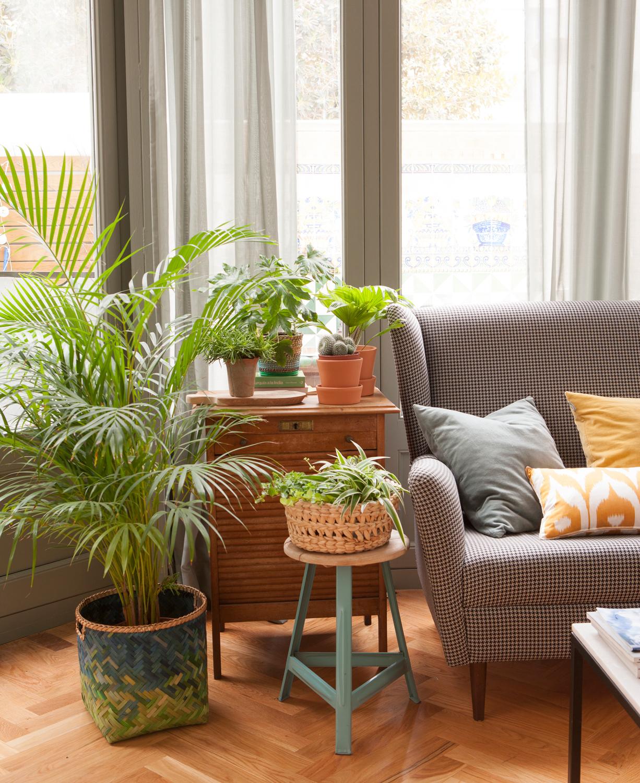 Una acogedora casa llena de plantas por todas partes for Decorar casa con muebles verdes