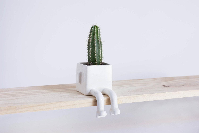 Macetas grandes y peque as de el mueble - Cactus en macetas pequenas ...