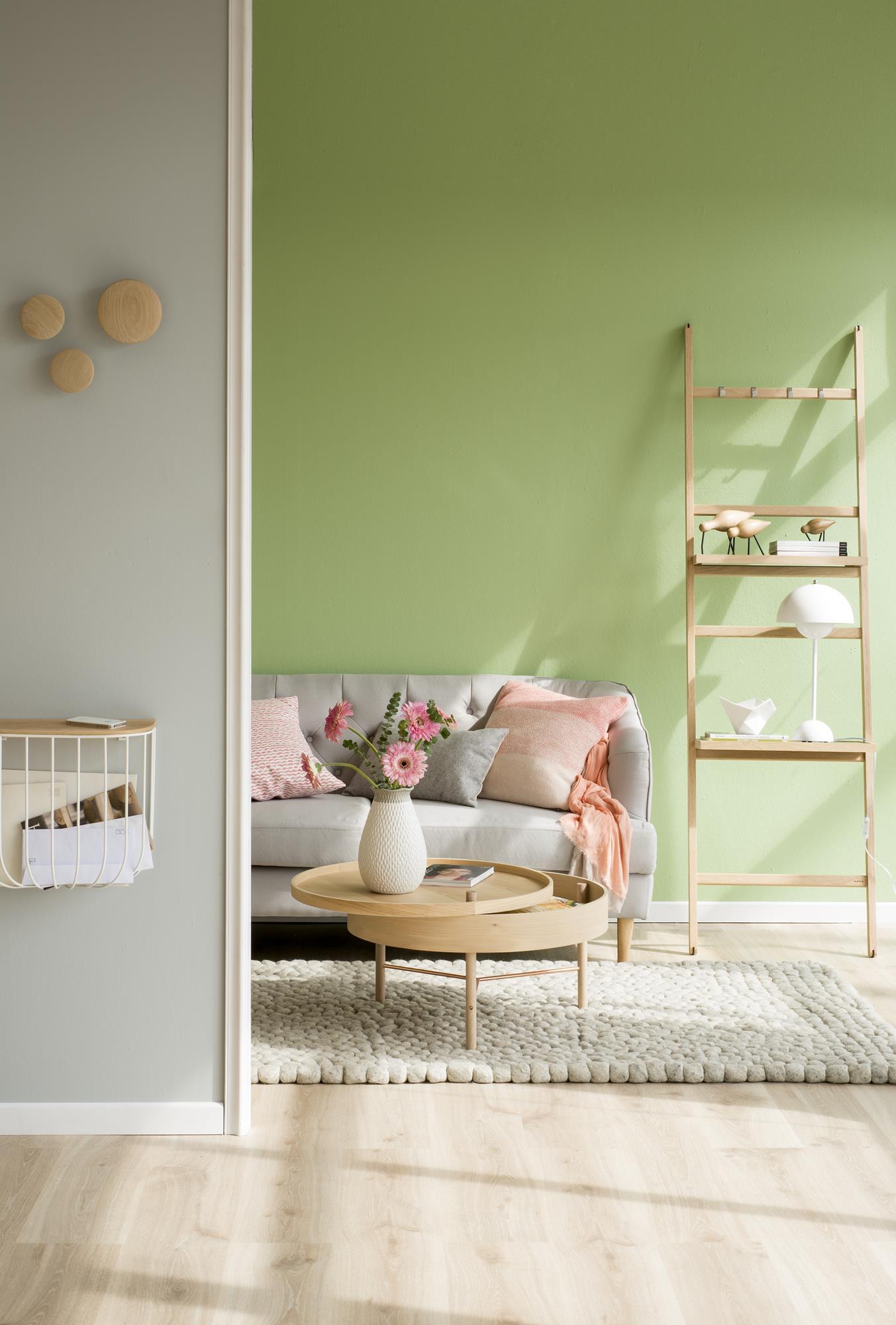 00421417 O (Copy). salon con pared verde y estantería de escalera