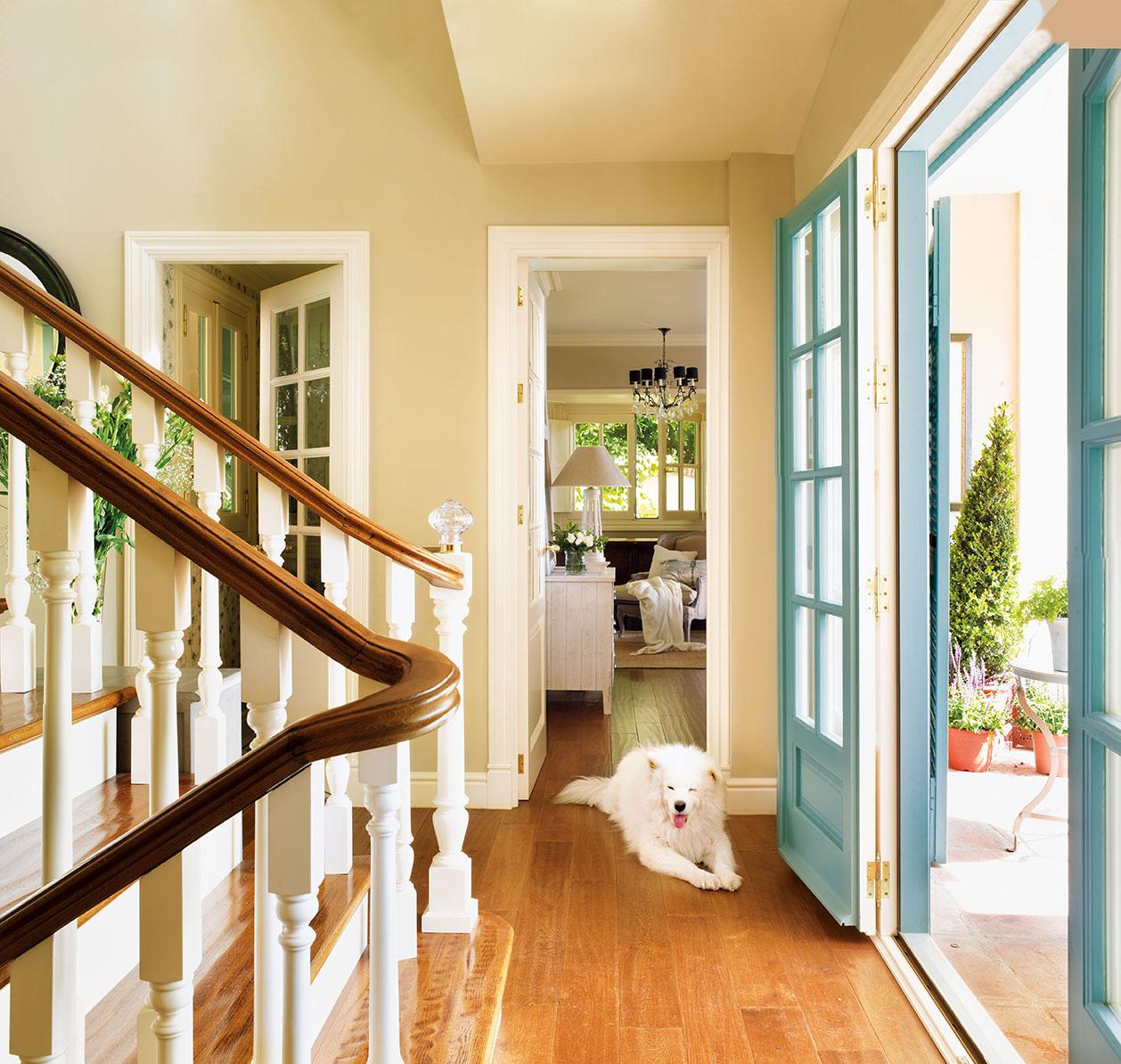 00320812. Entrada y salón de la casa con suelo de roble teñido y paredes claras_00320812