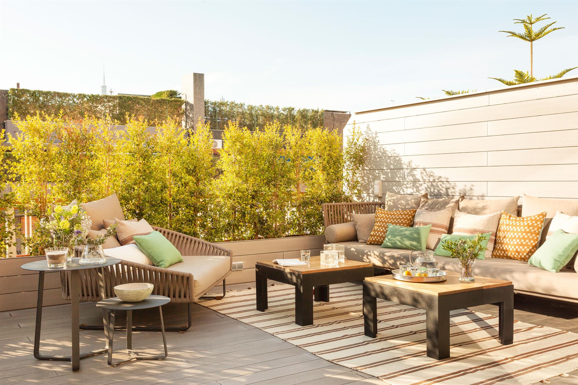 Plantas De Exterior Para Terrazas Fabulous Great Free Latest