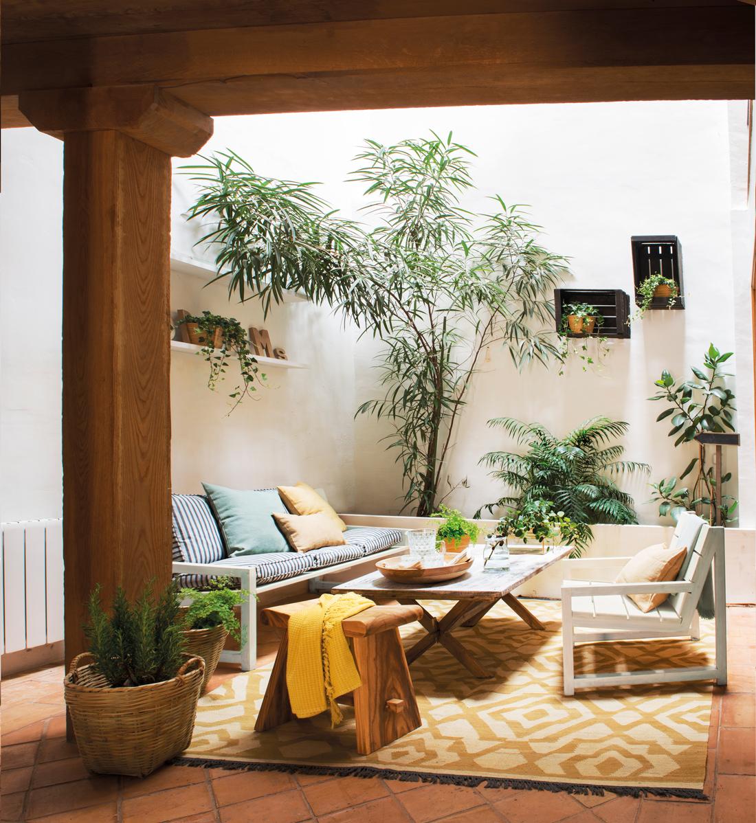 jardin interior expectacular en este dise ointerior de vivienda Un patio en una casa de pueblo