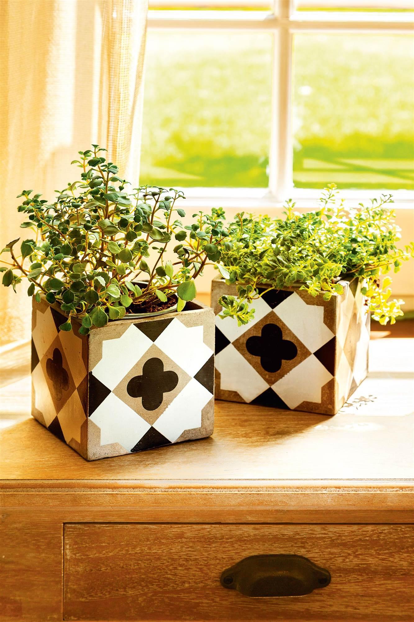 C mo decorar con plantas en casa - Macetas para interiores ...