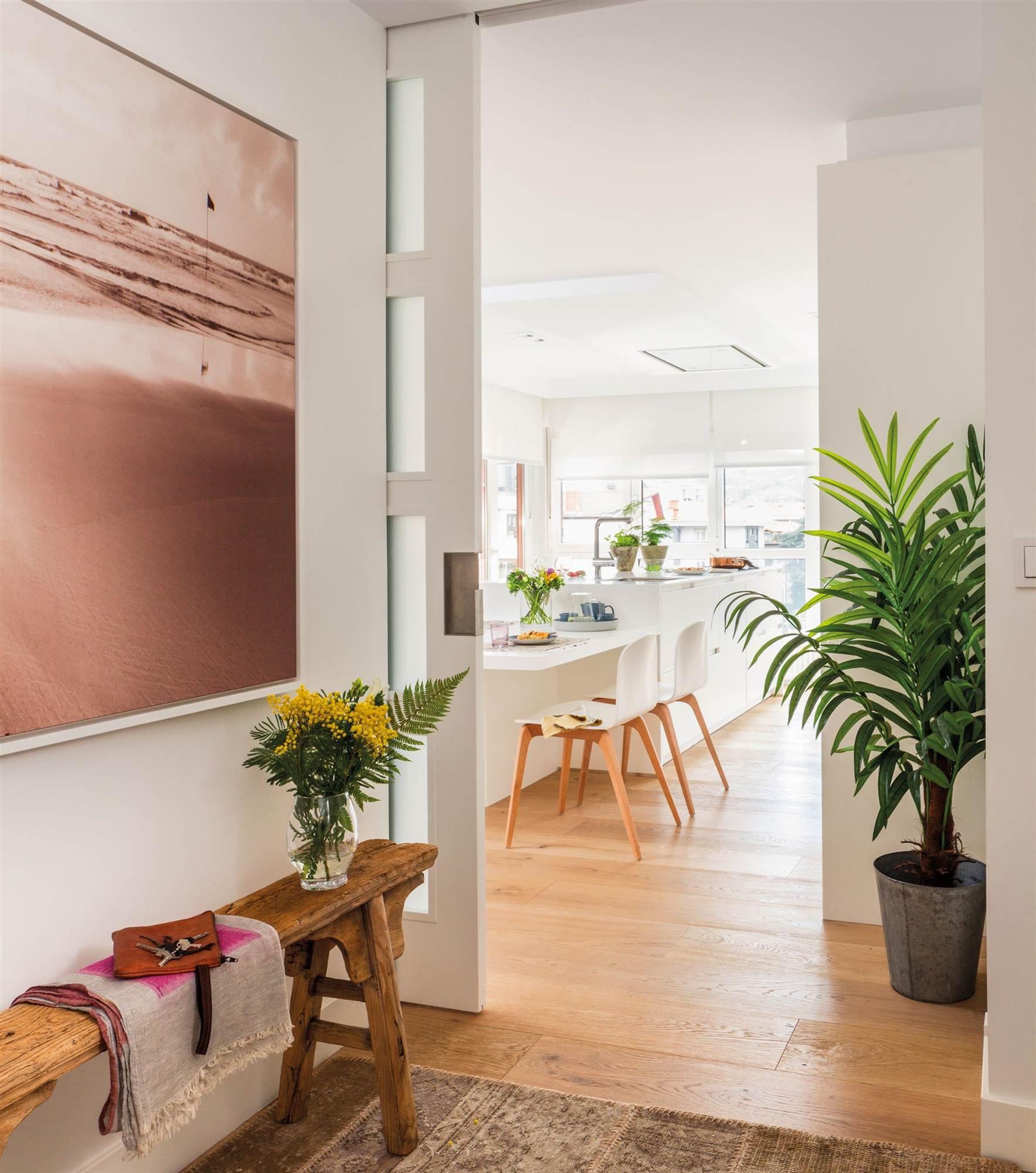 C mo decorar con plantas en casa - Como poner muchas fotos en una pared ...