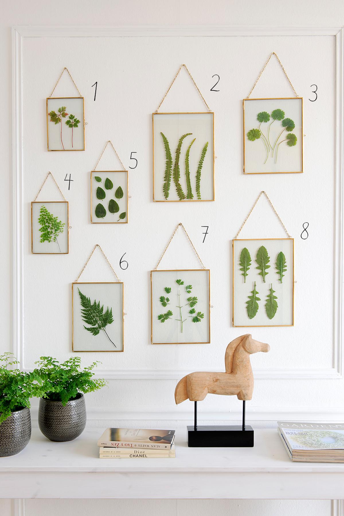 Cómo decorar con cuadros de hojas secas