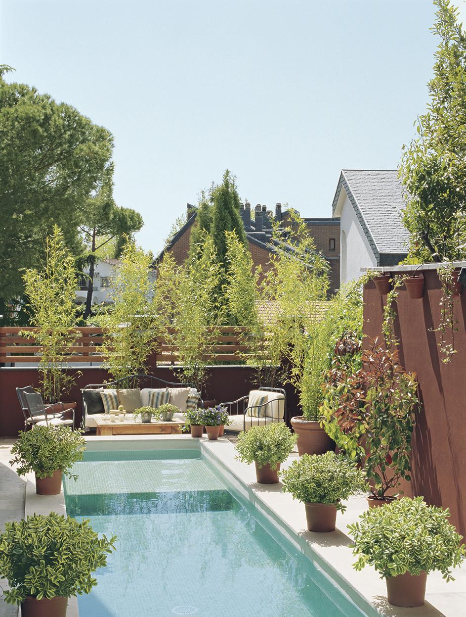 Piscinas alargadas stunning en muchas casas las piscinas for Piscinas estrechas y alargadas
