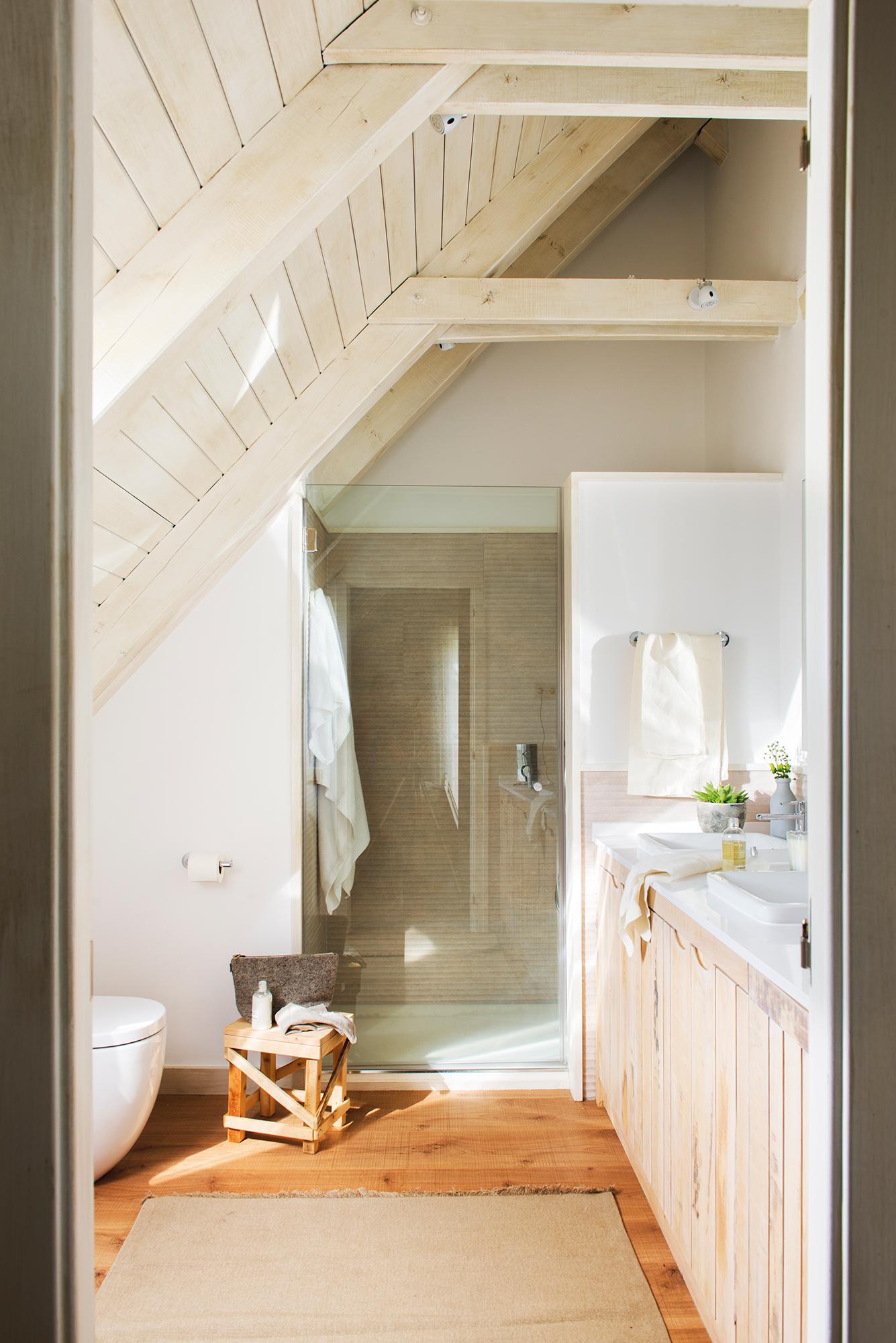 Sanitarios claves para elegir el lavamanos y el inodoro for Mueble para ducha