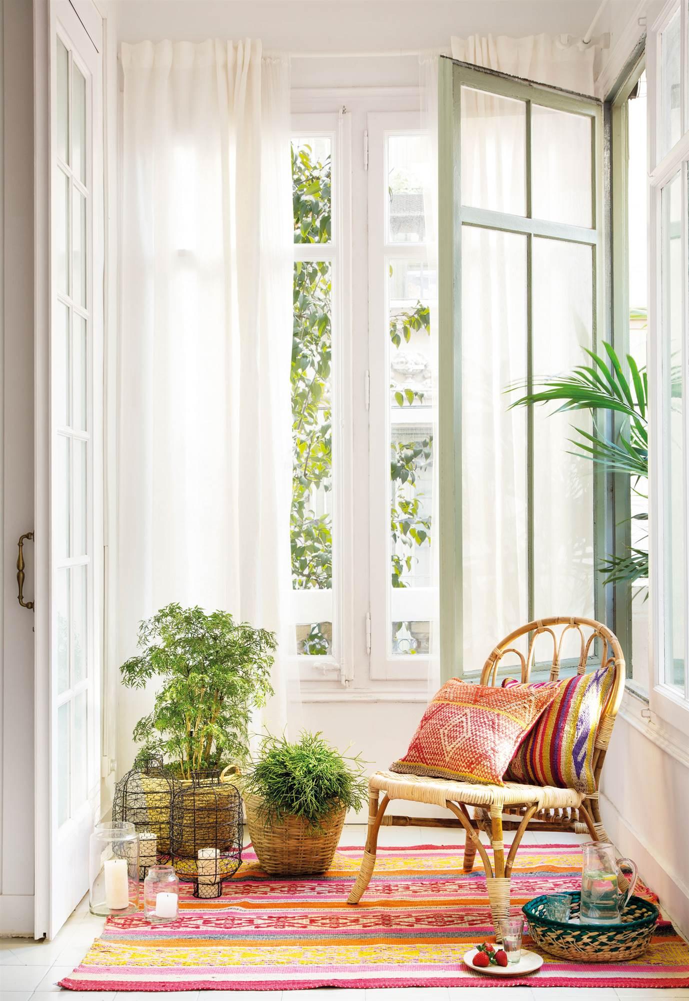 Este invierno tus plantas sobrevivir n for Cortinas para pasillos