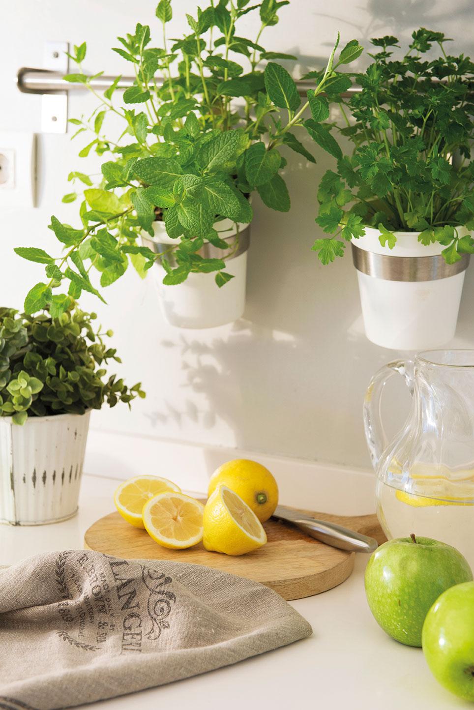 Las 10 reglas de oro para lograr una casa instagrameable - Plantas aromaticas en la cocina ...
