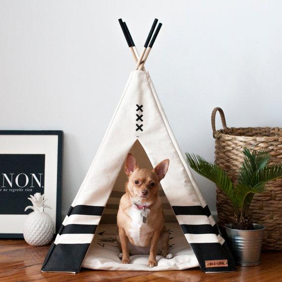 Camas y complementos para mascotas decorativos