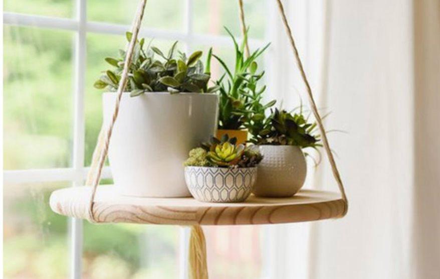 Plantas Colgantes Ideas Para Decorar - Plantas-colgantes-de-interior