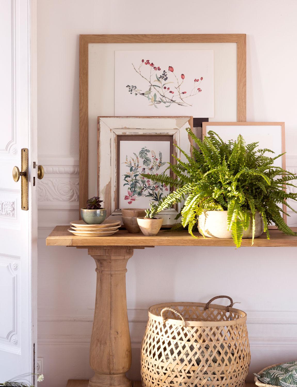 Clase de bot nica plantas y naturaleza for Cuadros decorativos clasicos