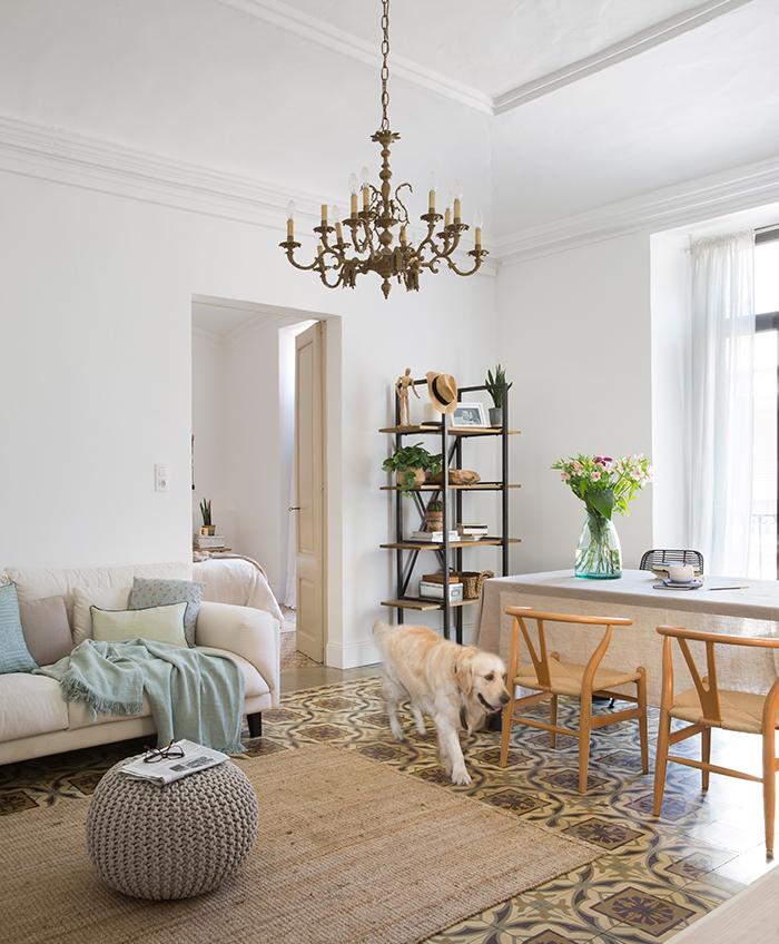 Trucos para limpiar una casa con mascotas - Limpiar alfombra en casa ...