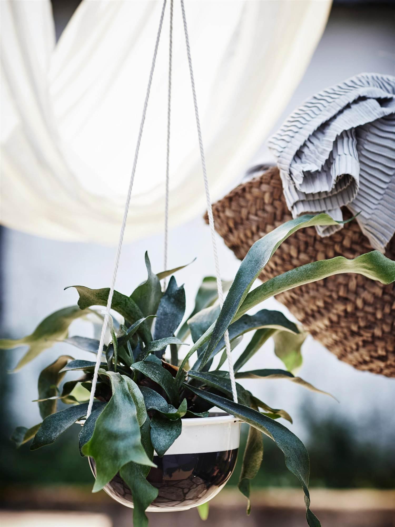 Encantador Foto Ikea Enmarca 8x10 Viñeta - Ideas Personalizadas de ...