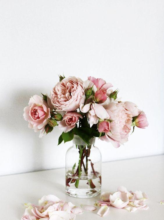 Plantas Y Flores De Color Rosa Palo