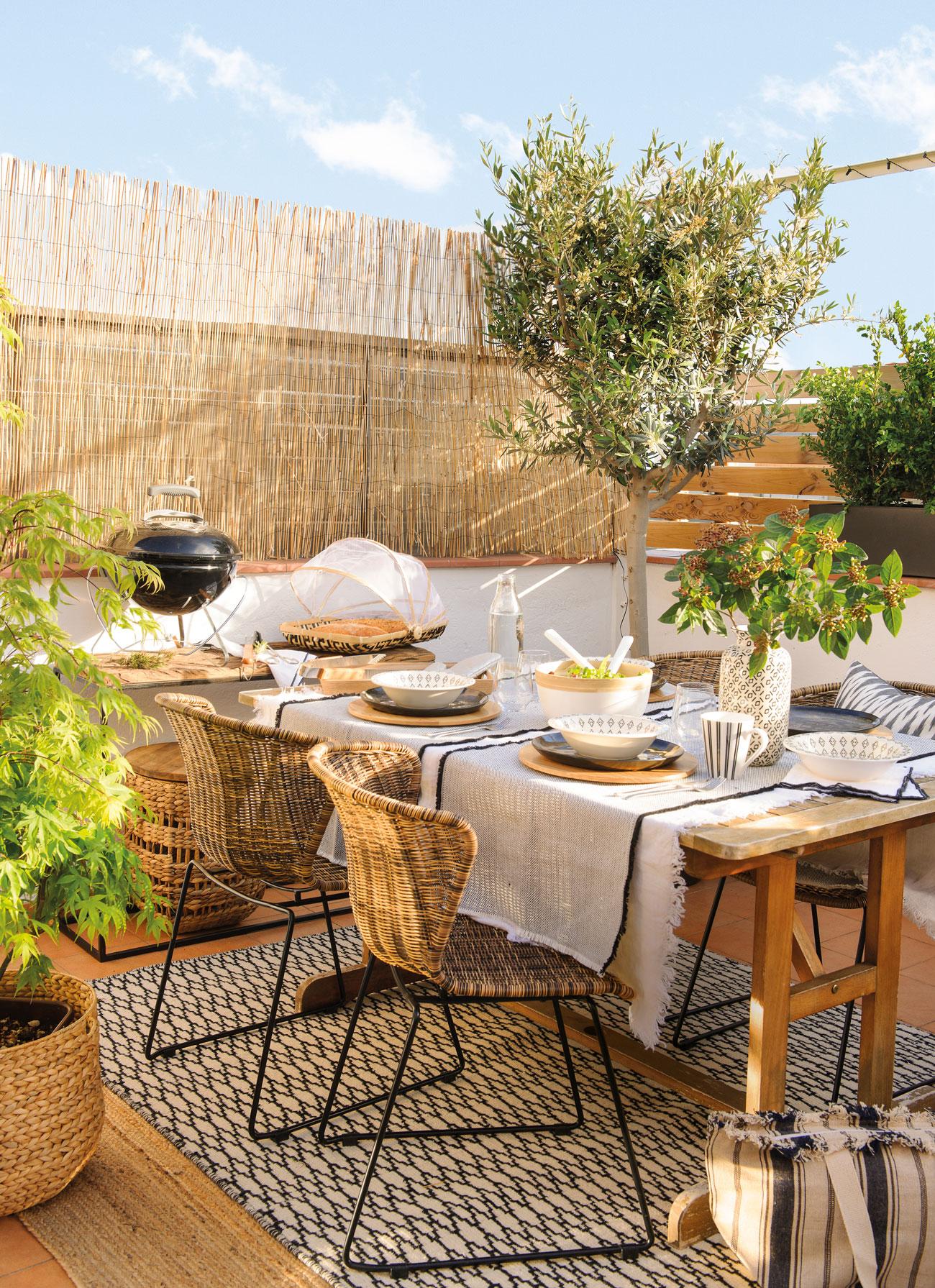 10 rboles que puedes plantar en tu terraza