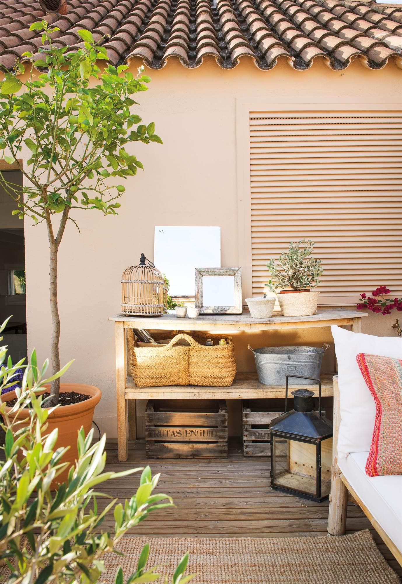 10 rboles que puedes plantar en tu terraza - Arboles terraza ...