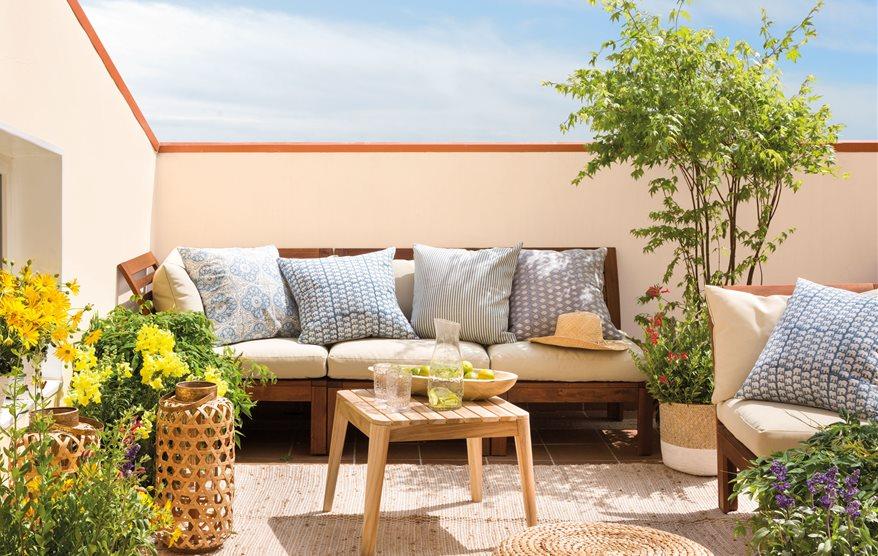 10 rboles que puedes plantar en tu terraza for Arbol para jardin
