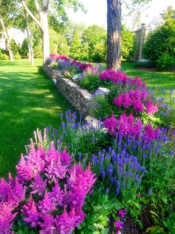 Full Sun Perennial Garden Plans
