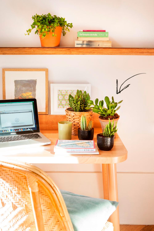 Zona de estudio con escritorio y estante de madera, silla de fibra natural, ordenador portátil y plantas. Planta de jade (crassula ovata) También conocida como la planta o el árbol del dinero.