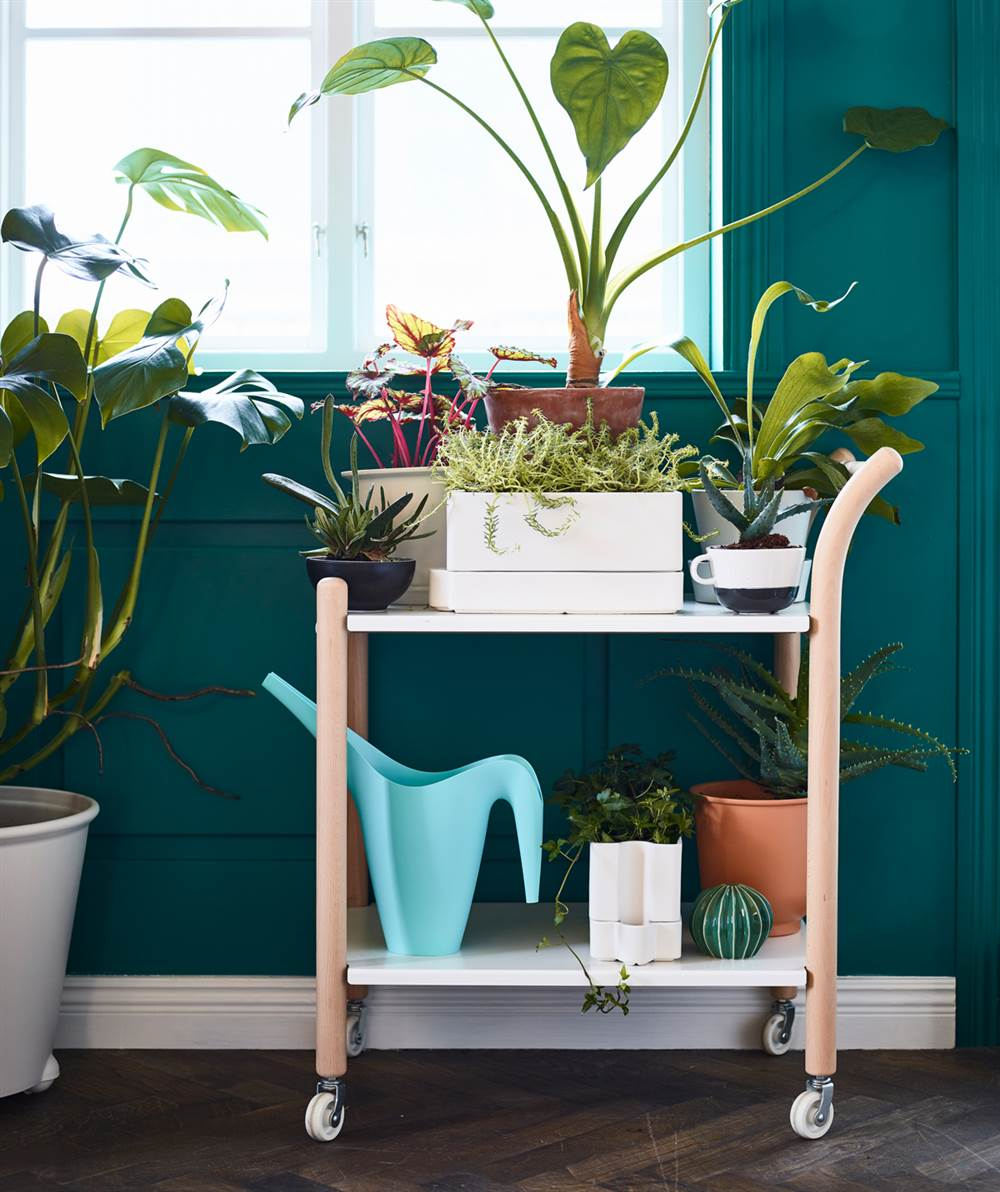ikea-salon-plantas-PH150115