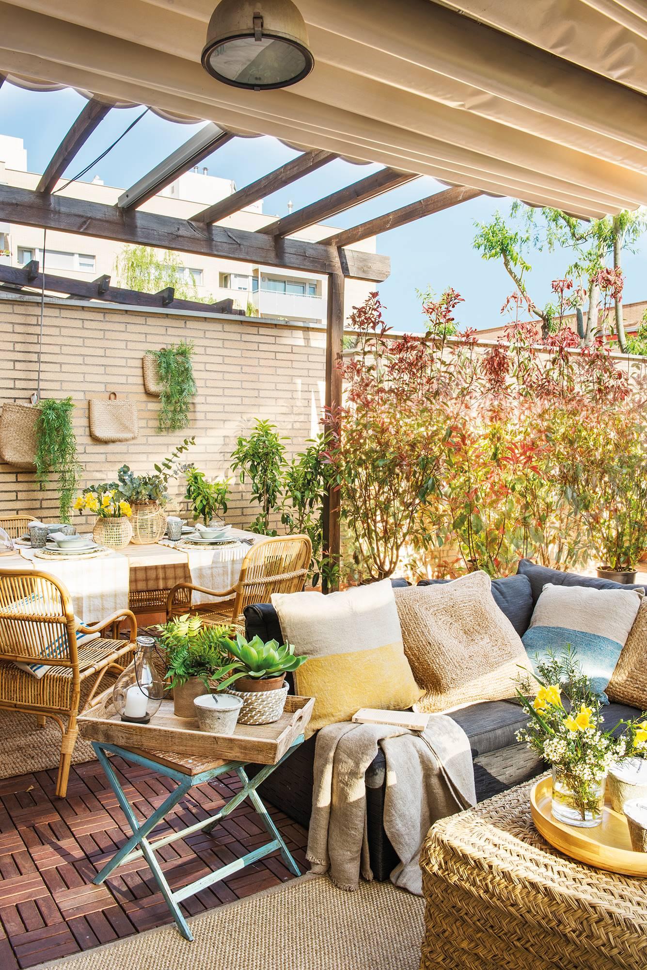 Plantas bajas ventajas e inconvenientes for Idea paisajismo patio al aire libre