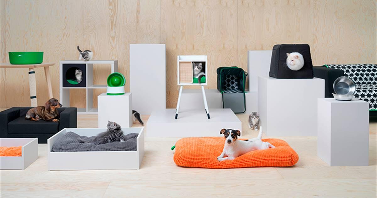 Colección de accesorios y muebles para perros y gatos