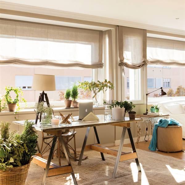 mejores plantas de oficinas grandes Plantas De Oficina Y Sus Beneficios