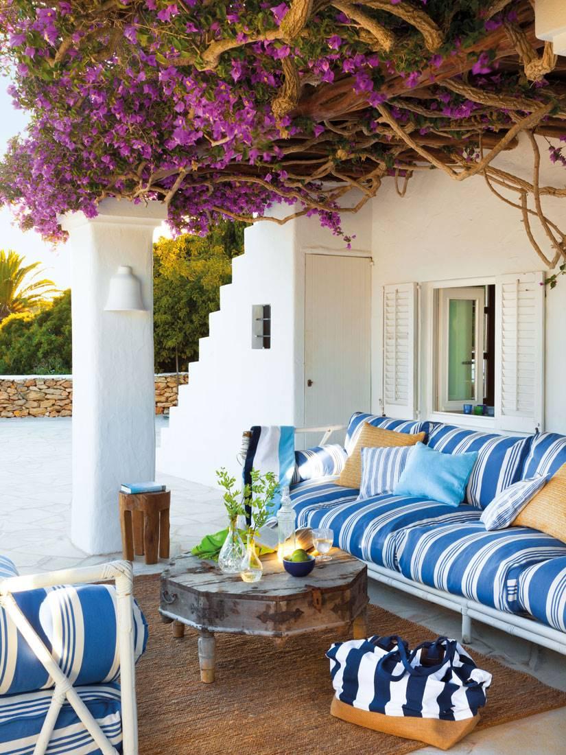 Enredaderas y plantas trepadoras: 30 propuestas para porches y terrazas